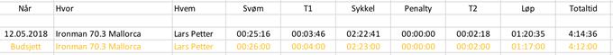 17 - Budsjett og resultat.png